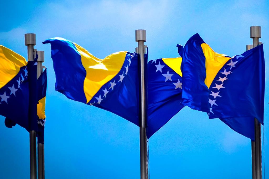 Zastava BiH, zastave