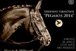 takmičenje Pegasos