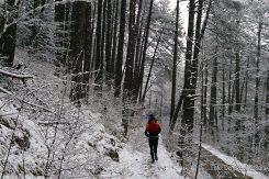 Zimski trail Trebević