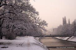 Vils, snijeg, miljacka, zima